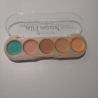 ...all i need concealer palette von essence
