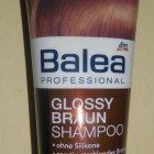 Professional - Glossy Braun - Shampoo von Balea